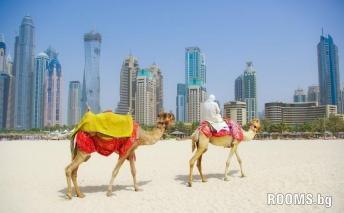 Dubai, a different place, Picture