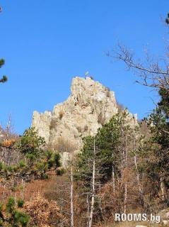 "Protected area ""Vinitsa stone"", Picture"