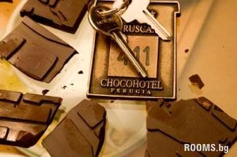 Slept among the chocolate ..., Picture