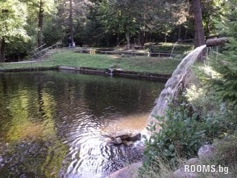 Fishpond - Dobrinishte, Picture