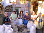 Fleece workshop Strandja, Picture 2