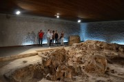 "Museum ""Neolithic dwellings"" - Stara Zagora, Picture 4"