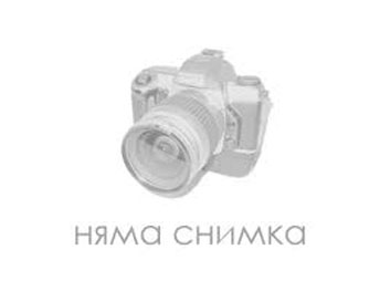 Accommodation / room Terziev