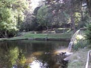Fishpond - Dobrinishte, Picture 1