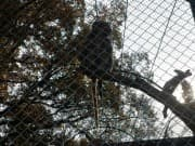 Zoo - Aytos, Picture 1